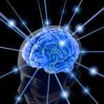 Nitric Oxide improves brain function